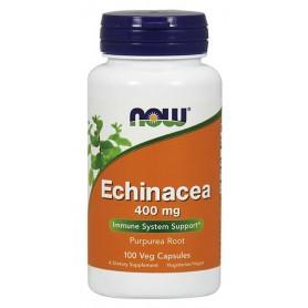 Echinacea 400 mg 100 kapsúl