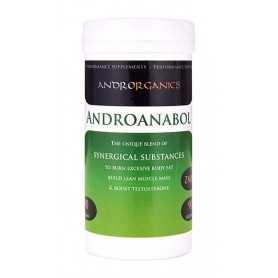 Androrganics Androanabol 90 g